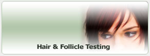 Hair & Follicle Testing